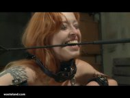 Bella Vendetta's Little S...