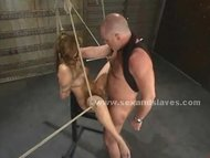 Ladies with hot bodies get access to all submission bondage pleas view on tube8.com tube online.