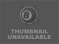Panda bear in sex toy por...