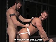 Logan Scott and Rusty Ste...