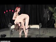 Mistress Bella Vendetta a...