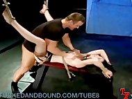 Bound Babe Begs