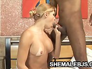 Horny shemale Andreia Mel...