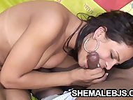Horny shemale Alessandra ...