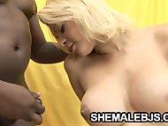 Giselle Lemos - Shemale M...